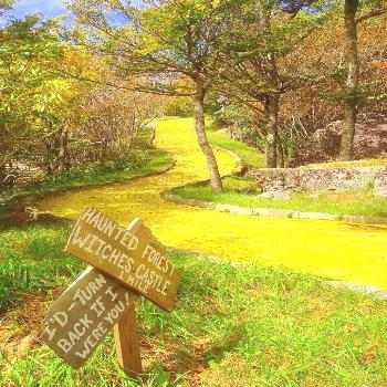 North Carolina's Magical Land Of Oz Is Re-Opening And You Need To Go